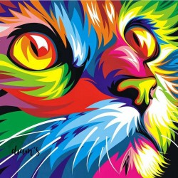 Chat multicolore - Broderie...