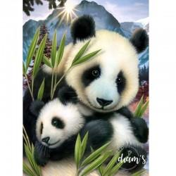 Maman panda et son petit -...