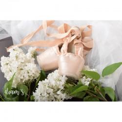 Chaussons de danseuses -...