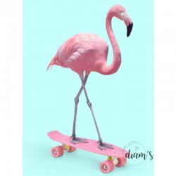 Flamant rose en skate -...
