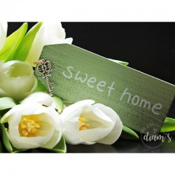 Sweet Home aux tulipes...