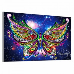 Papillon multicolore -...