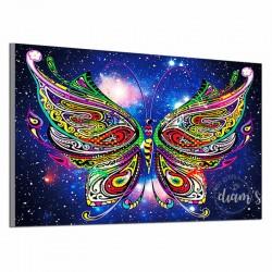 Papillon multicolore -...