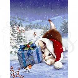 Chaton et son cadeau -...