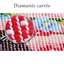 Sachet de diamants carrés -...