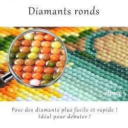 Cabanes Tchanquées - Broderie diamant